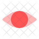 Biometric Eye Security Icon
