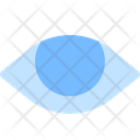 Eye Show Visible Icon