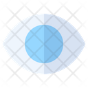 Eye Vision Eyeball Icon
