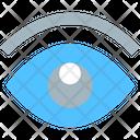 Eye Human Eye Body Part Icon