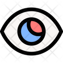 Vision Eye Success Icon