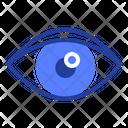 Eye Vision Pupil Icon
