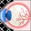 Eye Organ Body Part Icon