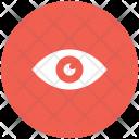 Eye Human Search Icon