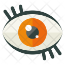 Visual Eye Vision Icon