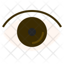Eye Sight Vision Icon