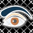 Eye Eyebrow Eye Beauty Icon