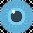 Eye Human Eye View Icon