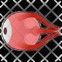 Eye Anatomy Icon