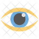 Eye Monitoring Eye Eye Scanning Icon