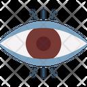 Eye Organ Body Part Eye Icon