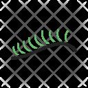 Eyelash Curler Icon