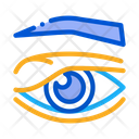Eyelid Problem Healthy Icon