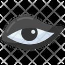 Eyeliner Eye Retina Icon