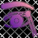 Eyeshadow Icon