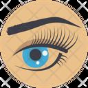 Eyesight Human Iris Icon