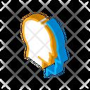 Face Fake Icon