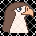 Falcon Animal Icon
