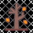 Autumn Fall Fir Icon