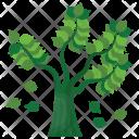 Falling Leaves Oak Icon