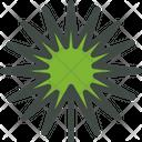 Fan Palm Palm Leaf Icon
