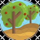 Farming Farm Fruits Icon