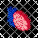 Fast Think Brain Icon