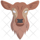 Fawn Icon