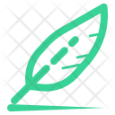 Feather Line Writing Icon