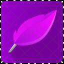 Feather Write Editor Icon