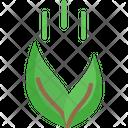 Go Greenm Feeding Plant Go Green Icon