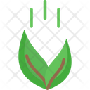 Feeding Plant Icon