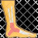 Feet Extremities Hoof Icon