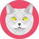 Cat Feline Face Icon