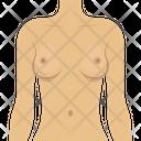 Female Body Icon
