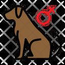 Female Dog Icon