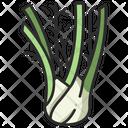 Fennel Healthy Herb Icon