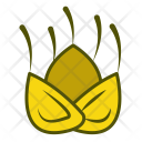 Fennel Vegetables Icon
