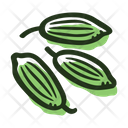 Fennel Seeds Icon