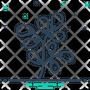 Fenugreek Ayurveda Thyme Icon
