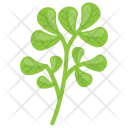 Fenugreek Icon