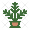 Fern Houseplant Pot Plant Icon