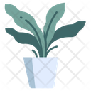 Fern Pot Icon
