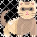 Ferret Wildlife Zoo Icon