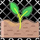 Afretile Soil Plant Soil Icon