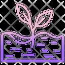 Fertile Soil Icon