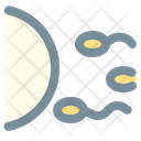 Fertilization Sperm Conception Icon