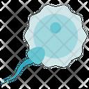 Biology Fertilize Reproduction Icon