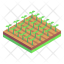 Land Fields Plantation Cultivation Icon