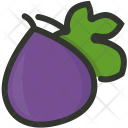 Fig Fruit Icon